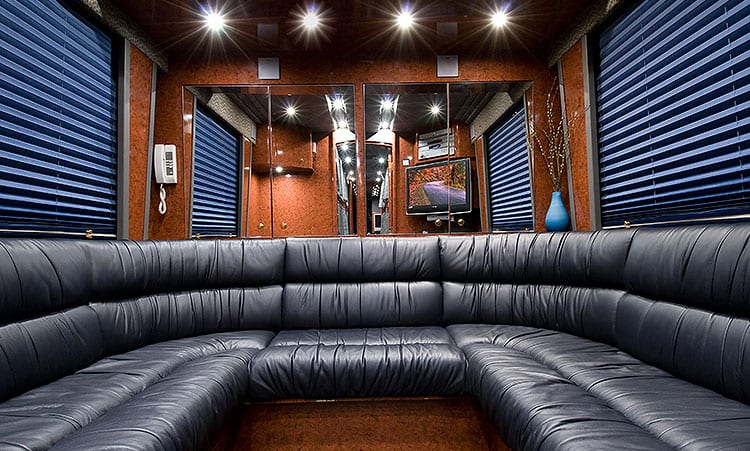 Blubyu entertainer coach rear lounge